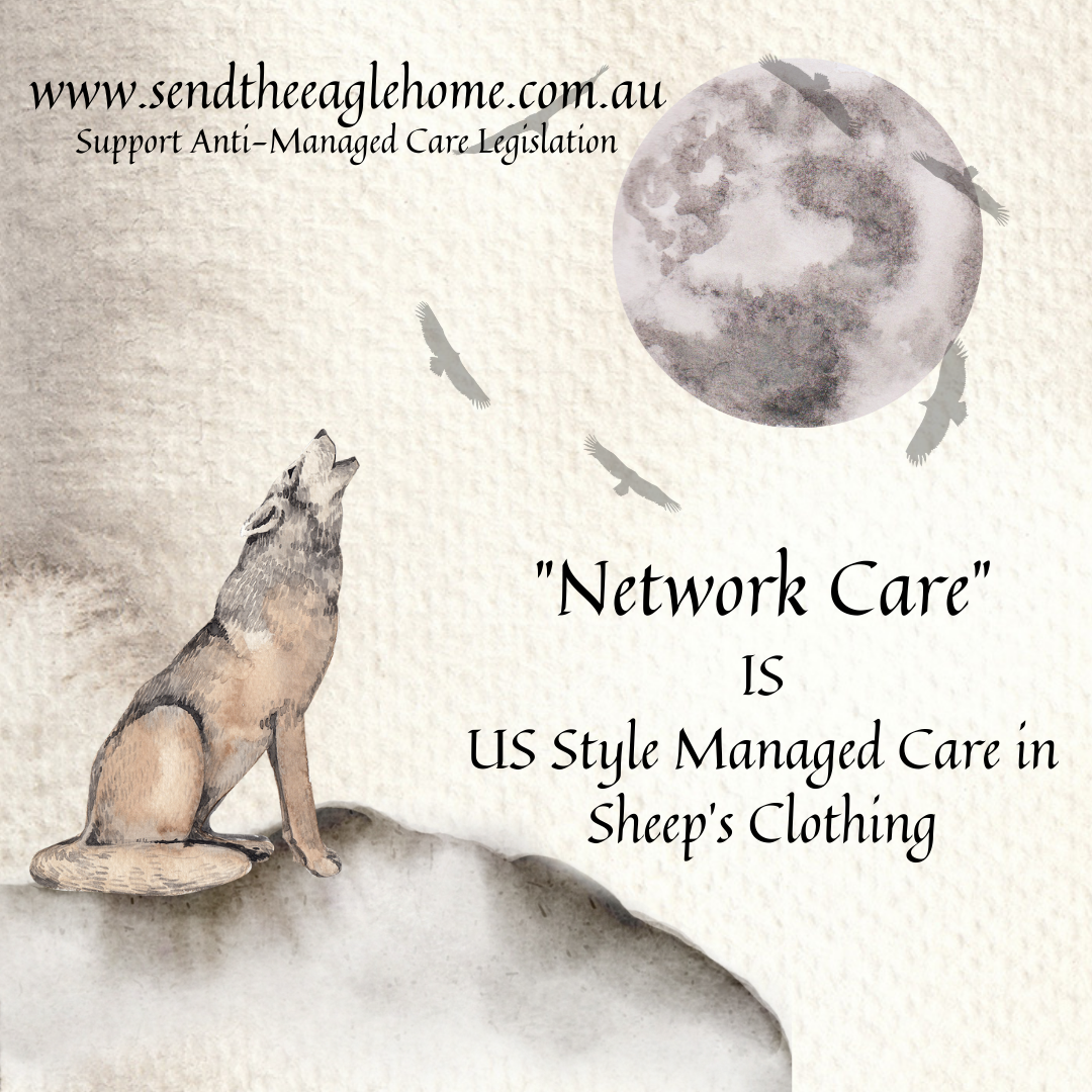"""""""Network Care"""" is US Style Managed Care in Sheep's Clothing"""